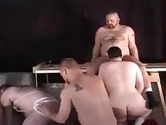 Linger Orgy instalment 2